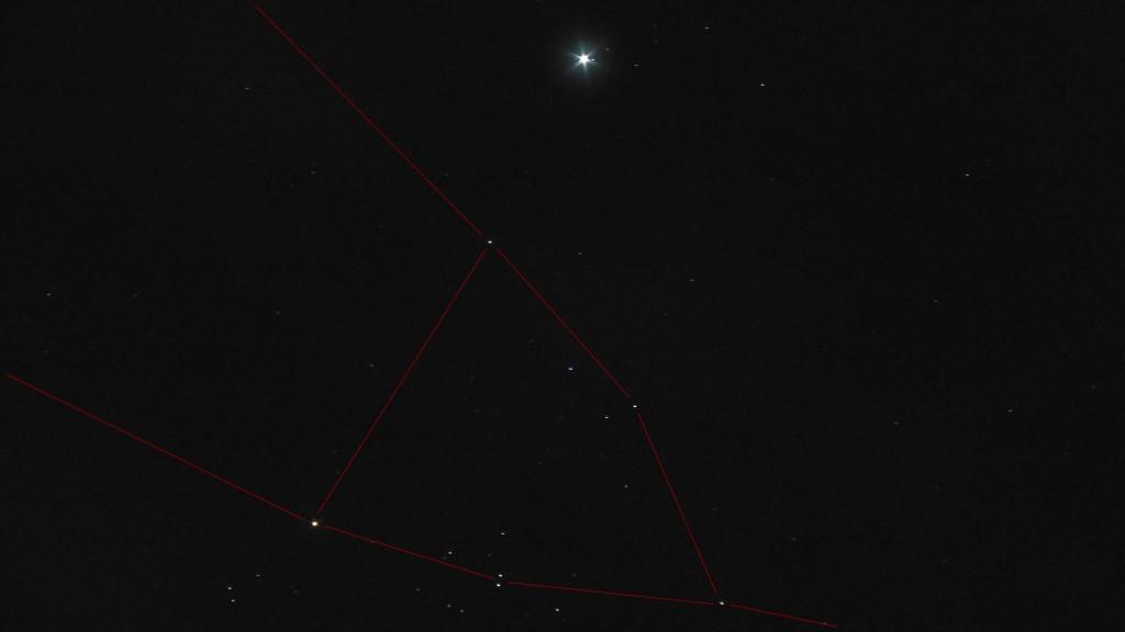 Taurus Lines