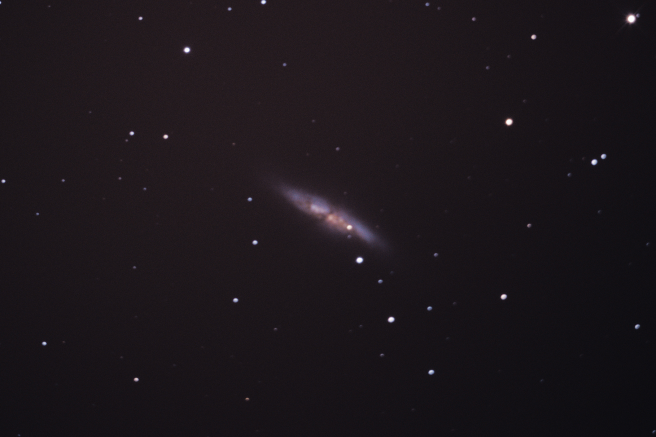 M82 100 x 50s